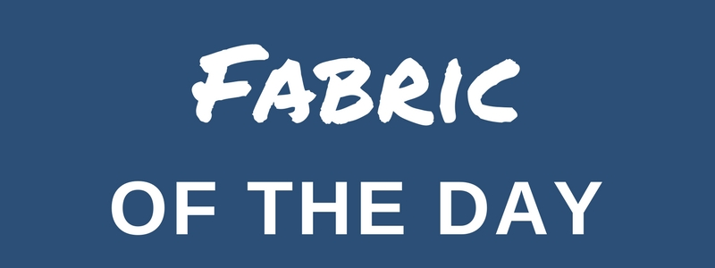 Fabric of the Day: Vineyard in Blue by Duralee